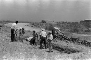 Pafos 1965 - archiwum CAŚ UW.