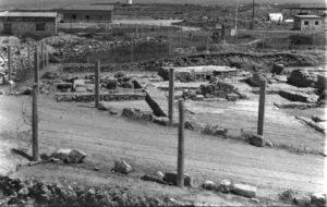 Pafos 1967a - Archiwum CAŚ UW