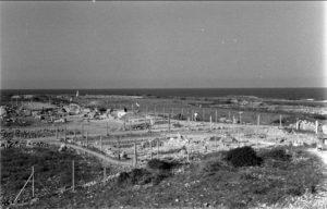 Pafos 1967b - Archiwum CAŚ UW